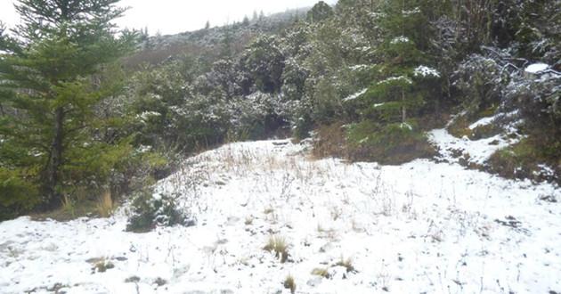 En quince entidades del país se pronostican valores de temperatura inferiores a cero grados Celsius