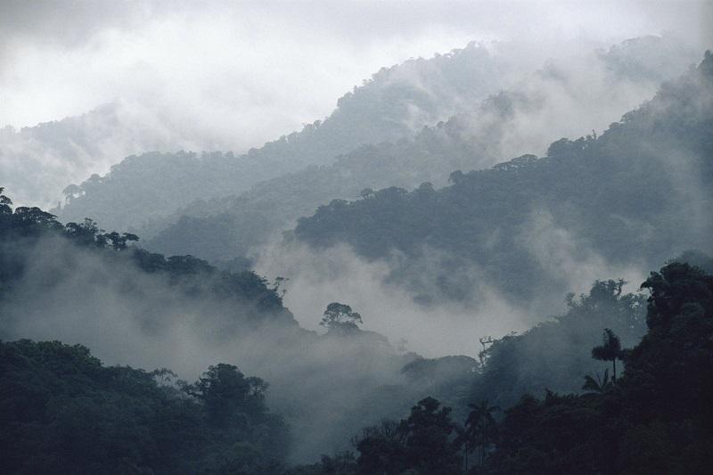 Temperaturas menores a -5 grados Celsius y heladas, se estiman en cordilleras de Chihuahua, Durango, Zacatecas, San Luis Potosí, Hidalgo, Puebla, Tlaxcala y Estado de México; de cero a -5 grados Celsius en sitios montañosos de Coahuila, Aguascalientes, Jalisco, Michoacán, Guanajuato, Querétaro, Veracruz y Oaxaca