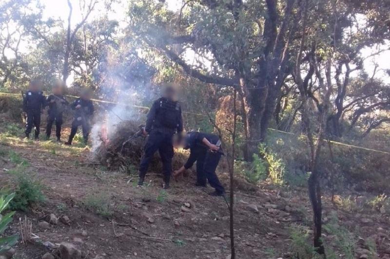 Bajo los procedimientos de ley, el personal policial acordonó la zona para el corte, hacinamiento e incineración de la marihuana