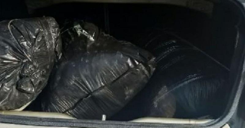 El detenido, identificado como Marcial G., de 57 años de edad, el vehículo y la droga serán puestos a disposición de las autoridades competentes
