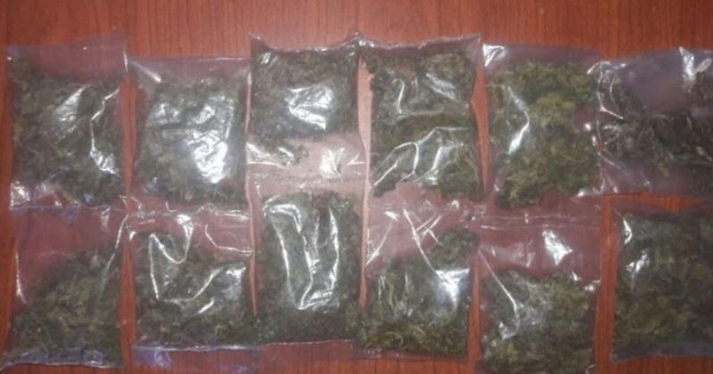 Al practicarle una revisión, le localizaron 12 envoltorios de hierba verde seca con las características propias a la marihuana, que fueron asegurados