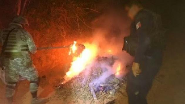 Elementos de la Policía Michoacán y de la Sedena procedieron a incinerar la droga en el lugar donde fue localizada, con la finalidad de evitar que llegue a las manos de la ciudadanía