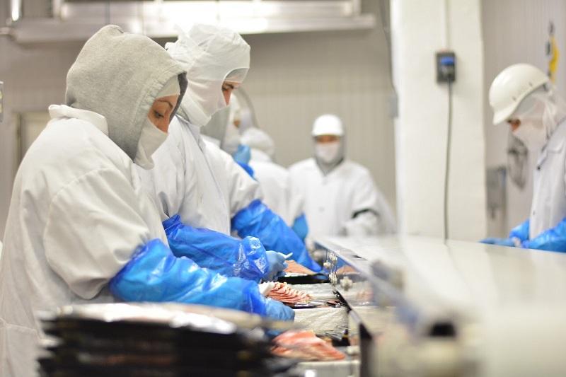 Bafar, General Electric, Kimberly Clark, ArcelorMittal y Fedex, así como Viscofan, Treofan, Merza y Moctezuma, son algunas de las empresas que contribuyen a la producción manufacturera del estado