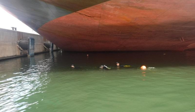 El cargamento asegurado fue puesto a disposición de las autoridades correspondientes para la integración de la carpeta de investigación correspondiente