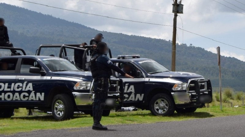 Por su parte, la Unidad Ambiental de la Policía Michoacán, en coordinación con autoridades federales, aseguró 95 rollos de madera, cuya legal procedencia no pudo ser acreditada