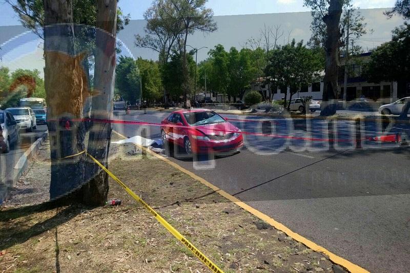 El lamentable accidente se registró cuando la víctima se encontraba en carriles laterales y en un momento determinado trato de cruzar la avenida, siendo impactado por un vehículo Honda tipo Civic, de color rojo