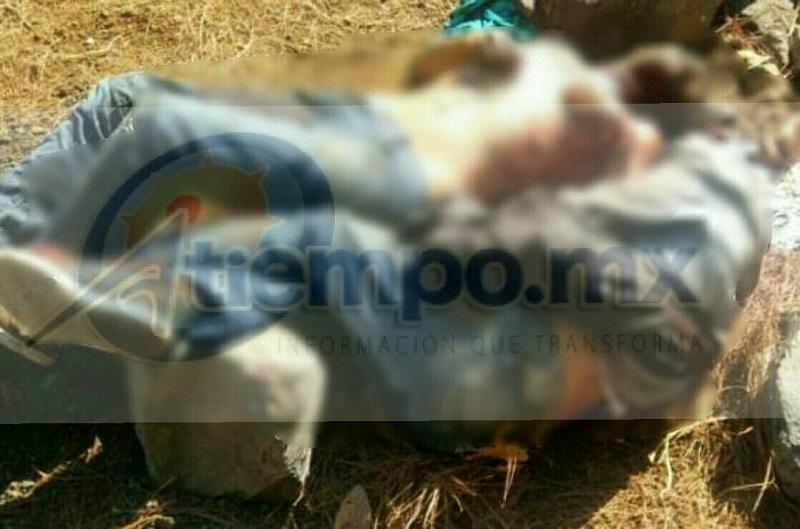 Los cuerpos presentaban heridas por arma blanca en el cuello y cara así mismo uno de los occisos tenía cercenada la mano derecha