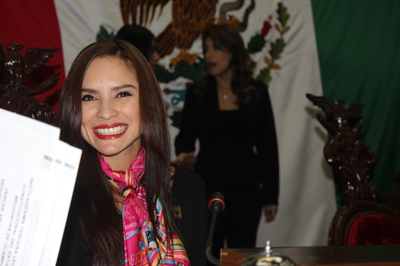 Nalleli Pedraza añadió que dicha Ley  es necesaria en Michoacán, ya que con ello se cubre un vacío institucional