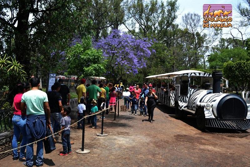 Durante las dos semanas del periodo vacacional, el recinto faunístico abrirá sus puertas todos los días de la semana, de 10:00 a 18:00 horas, brindando aprendizaje y diversión