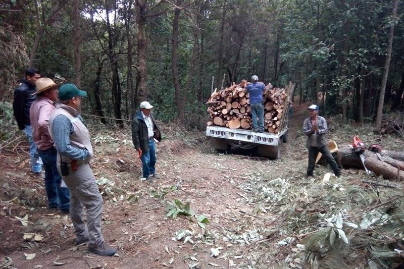 Es importante mencionar que la autoridad ambiental continuará desplegando estos operativos de manera coordinada en distintos puntos del estado
