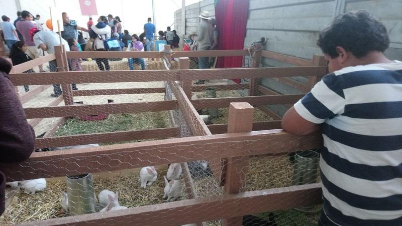 Medina Niño resaltó que sin duda, el haber instalado la Granja Infantil es un gran acierto del Gobierno del Estado, porque además de divertirse, conocen y aprenden más de los animales