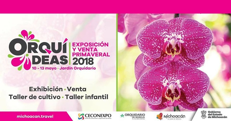 Durante los cuatro días, la exposición y venta de orquídeas comenzará a las 10:00 horas y concluirá a las 18:00 horas