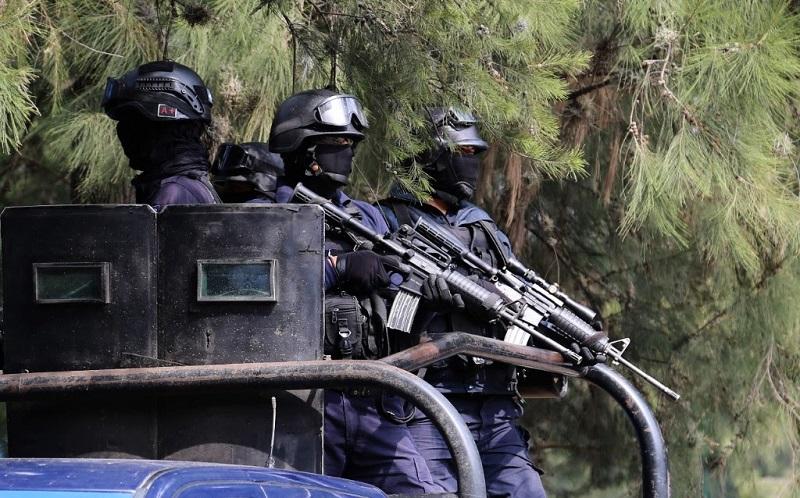 Los operativos se realizan en los municipios de Marcos Castellanos, Cojumatlán, Venustiano Carranza, Briseñas, Sahuayo, Villamar, Chavinda, Cotija, Tingüindín, Tocumbo y Jiquilpan