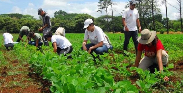 Rubén Medina Niño, titular de la dependencia dio a conocer que el objetivo de esta ADR será la puesta en marcha e implementación de estrategias de desarrollo para la seguridad alimentaria y nutricional