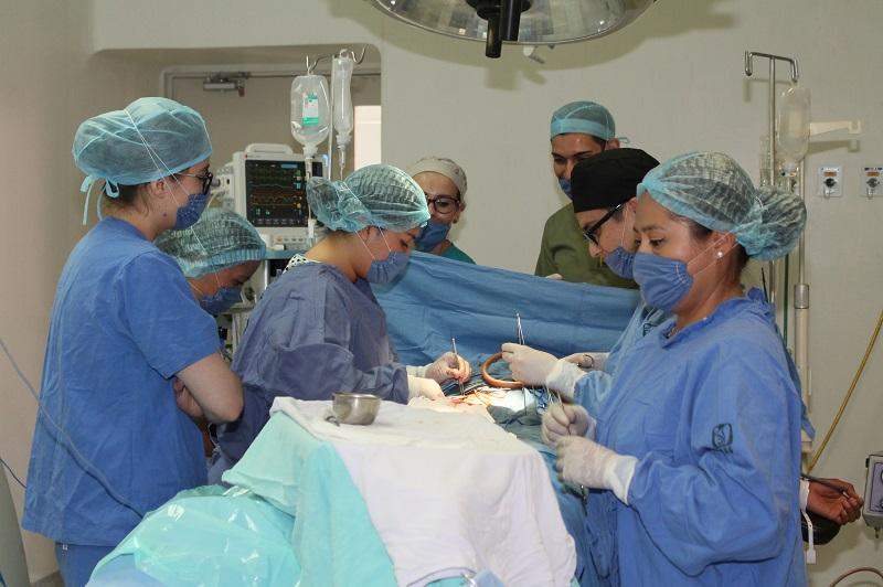 Un trasplante consiste en un tratamiento médico complejo para trasladar órganos, tejidos o células de una persona a otra para mejorar su calidad de vida