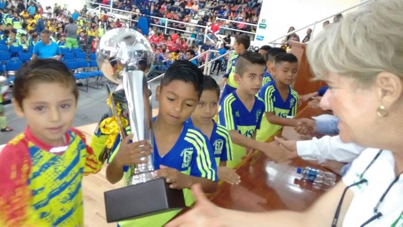 Actualmente la liga está integrada por  88 clubes, y 360 equipos, con la participación semanal de más de cinco mil niñas y niños y adolescentes
