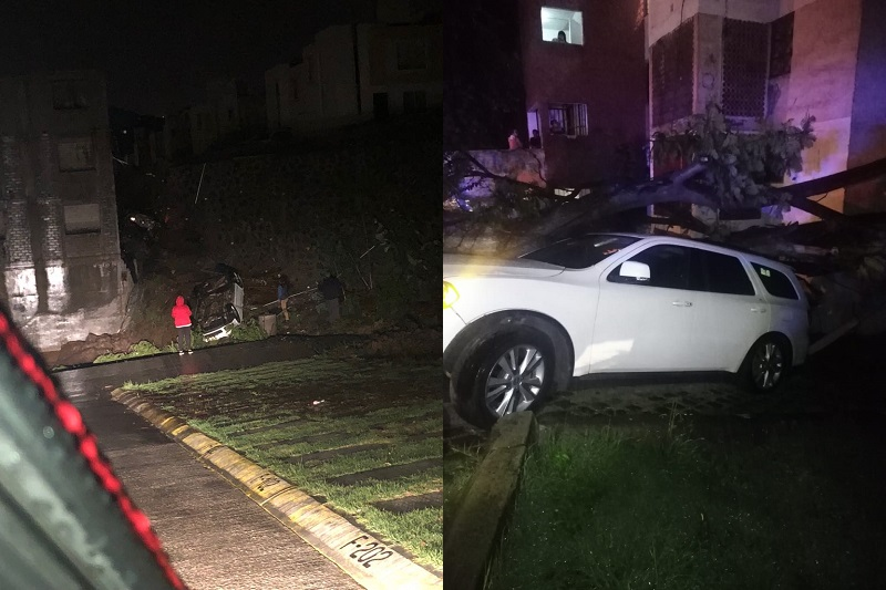 Durante y después de las lluvias se registró un número no cuantificado de vehículos afectados al ser arrastrados por las corrientes de agua, o bien, cuando les cayeron árboles que fueron derribados por los vientos