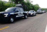 En una primera acción en el municipio de Madero, los elementos de la Policía Michoacán ubicaron un plantío de marihuana de aproximadamente 800 metros cuadrados en el cerro entre las comunidades de Etúcuaro y Parritas