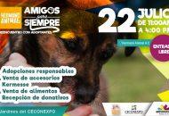 Esta actividad se llevará a cabo en los jardines del Centro de Convenciones y Exposiciones de Morelia