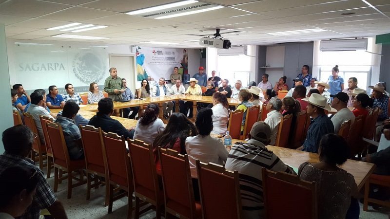 Destina SAGARPA apoyos por más de 16 mdp para sector agrícola