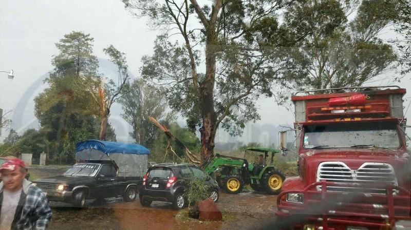 La vialidad fue cerrada por varias horas hasta que personal del Ayuntamiento apoyado con maquinaria retiró los árboles, mientras personal de la Policía Michoacán se encontraba desviando la circulación
