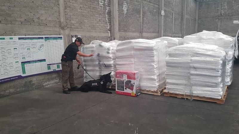 La droga fue puesta a disposición del Agente del Ministerio Público de la Federación, por efectivos de la Policía Federal, en Morelia