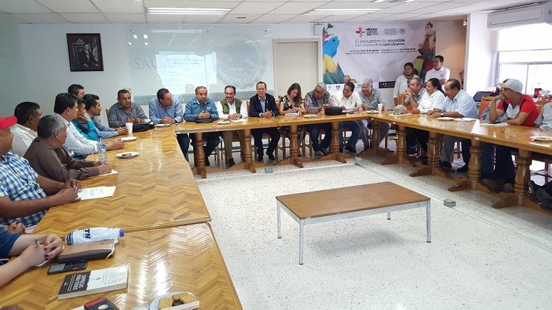 De igual forma, determinar cómo se operará el programa de producción de mango, con sanidad, inocuidad y calidad, que permita la comercialización nacional y de exportación de forma oportuna y responsable