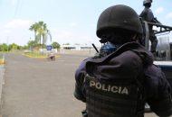 La Unidad Ambiental de la Policía Michoacán en su lucha para inhibir la comisión de delitos contra el medio ambiente, decomisó 175 rollos de madera, cuya legal procedencia no pudo ser acreditada