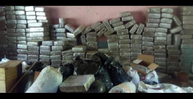Encontraron 305 paquetes prensados, 27 costales y 18 bolsas negras con hierba verde con las características propias de la marihuana