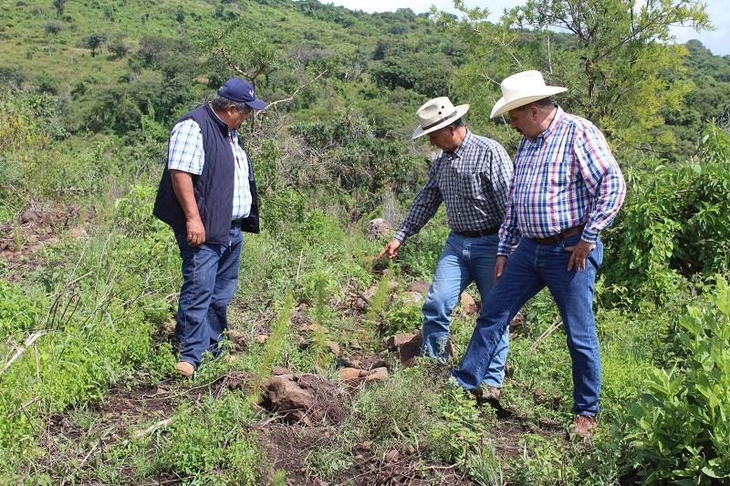 La superficie de apoyo es de 100 hectáreas para las cuales se destinaron 1 millón 280 mil pesos