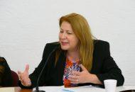 Nosotras tenemos que y vamos a trabajar en favor de las mujeres y eso nos queda muy claro: ya tenemos una gran agenda legislativa con perspectiva de género, que incluye el presupuesto de 2019: Portillo Ayala