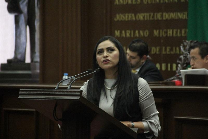 Saucedo Reyes explicó que resultan necesarias estas reformas ya que en la Constitución Política del Estado de Michoacán, no se contempla un enfoque basado en derechos para aplicar el concepto del interés superior del niño como concepto primordial en la toma de decisiones