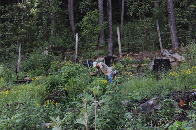Además, se aseguró una motosierra y combustible, utilizados para el delito de tala ilegal