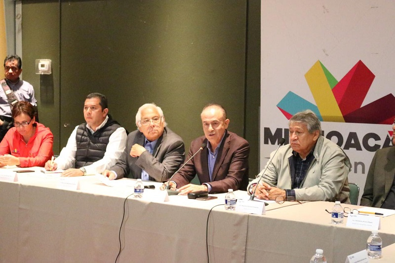 Durante la conferencia, Sigala Páez agradeció al gobierno federal por conducto de la directora de gestión de riesgos, por la gentileza de estar atentos a este tema a través de sus representaciones en Michoacán