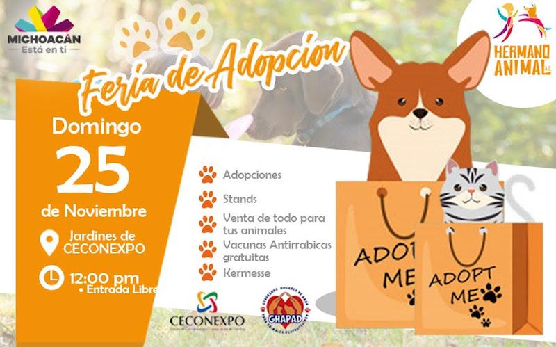 En dicho evento se pondrá en adopción a más de treinta mascotas desparasitadas, esterilizadas y vacunadas para quienes deseen llevarlas a su nuevo hogar