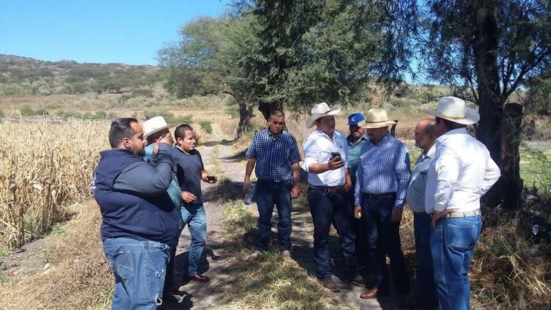 La granizada afectó principalmente a productores de los ejidos de Quringuicharo y La Soledad, perteneciente al municipio de Ecuandureo