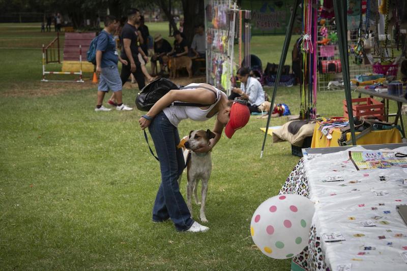 En el evento habrá más de treinta perros desparasitados, esterilizados y vacunados para todos aquellos que deseen acoger una mascota