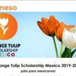 Los interesados pueden realizar su proceso de solicitud a través de la página: www.nesolatinoamerica.org/programas para ubicar en que universidad se ofrecen programas de estudio de acuerdo a su interés