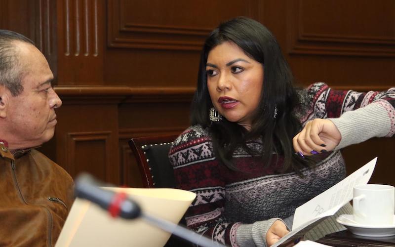 En el GPPT estamos a favor de la transparencia pero totalmente en contra de la agresión: Brenda Fraga