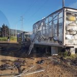 Testigos indicaron que un grupo de personas agresivas grafitearon las unidades. Posteriormente les prendieron fuego y se dieron a la fuga.