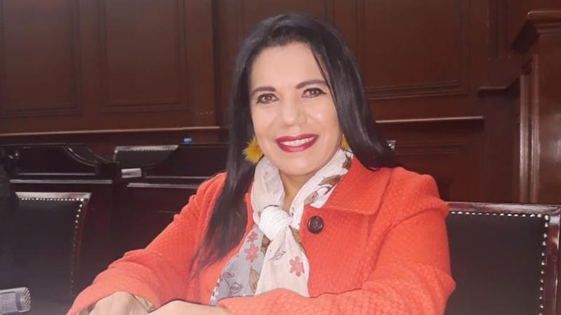 """La diputada local consideró que sus compañeros de bancada """"juzgaron desmedida y amenazante"""" su proceder y el sentido de su voto en la dictaminación del paquete fiscal 2019"""
