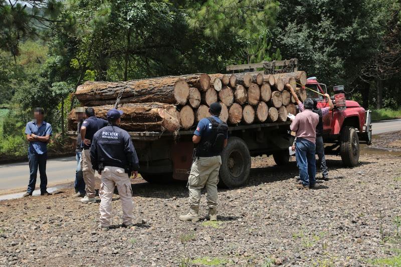 Las labores operativas y preventivas, permitieron a los agentes policiales decomisar mil 719 rollos de madera, de los cuales 885, fueron asegurados en la región Morelia