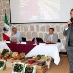 En el caso de Michoacán, son pocos los productores adheridos al Decreto señalado, no obstante que un número importante de productores del campo mantienen asegurados a sus trabajadores eventuales