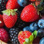 Durante la asamblea de productores, se acordó atender de manera integral a la industria de las berries, en especial el tema de la sanidad para superar afectaciones que han dañado a más de mil hectáreas, en la región de Los Reyes