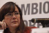 """En el contexto de las elecciones de este año en Puebla y Baja California, el miércoles pasado Polevnsky señaló que hubo muchas """"sabandijas"""" que se infiltraron y que ahora muchos """"están echando el ojo"""" a Morena, partido de mayor peso en el país"""