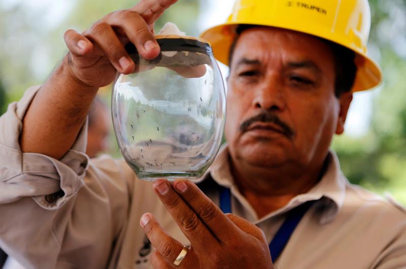 De acuerdo al reporte epidemiológico correspondiente a la semana 11, en la entidad se tienen registrados 53 casos de dengue; de este total, siete presentan signos de alarma, los cuales ya fueron canalizados a la unidad médica correspondiente para su atención y tratamiento