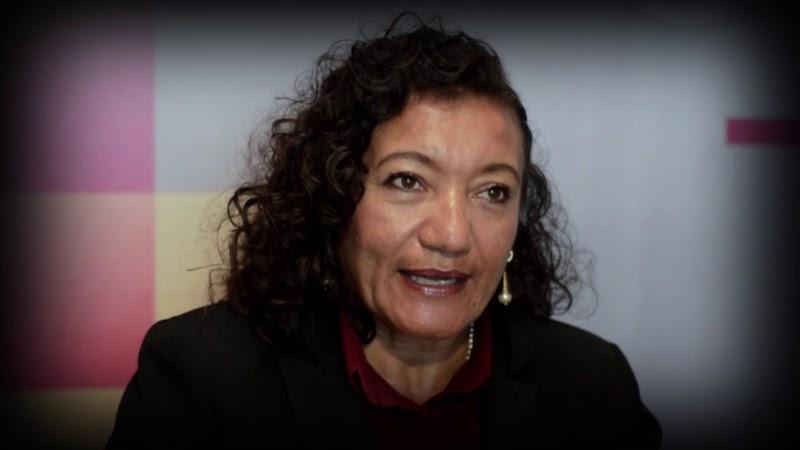 """""""Vamos a poner el voto diferenciado. Ya metimos por escrito lo que vamos a anteponer y al organismo lo vamos a anteponer como desconcentrado, no descentralizado"""", afirmó, María Chávez"""