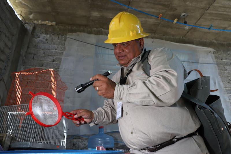 Personal de vectores ha realizado la lectura de 9 mil 400 ovitrampas ubicadas en las ocho jurisdicciones sanitarias, a fin de detectar el riesgo de la densidad del mosco
