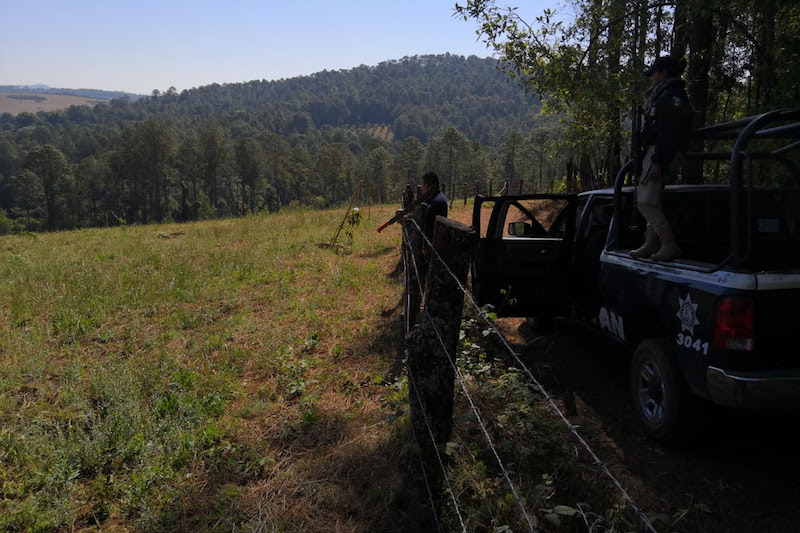 Al día de hoy, la Mesa de Seguridad Ambiental registra 65 operativos ejecutados, con la recuperación de alrededor de 510 hectáreas, atendiendo 16 municipios en el Estado