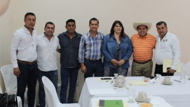 Se busca sumar esfuerzos entre Guerrero y Michoacán: Pantoja Arzola
